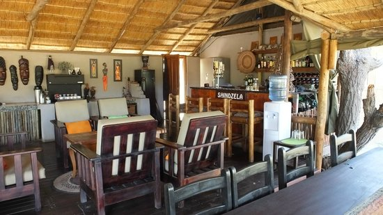 Shindzela Tented Camp: In the main area