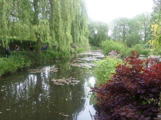 Claude Monet's House and Gardens: Estanque donde se inspiró Monet para pintar sus Nenúfares