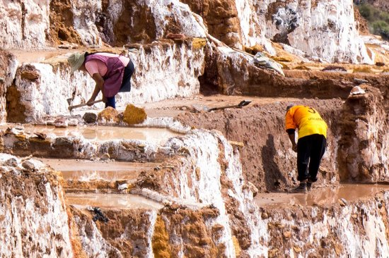 Salinas de Maras: Man working on the sections