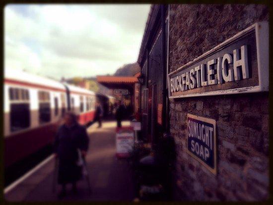 South Devon Railway: Buckfast - By Graham Bard