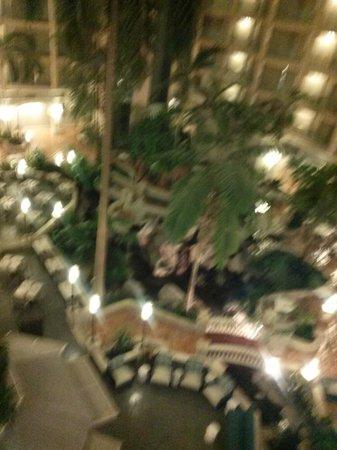 Sheraton Suites Cypress Creek Ft. Lauderdale: lobby