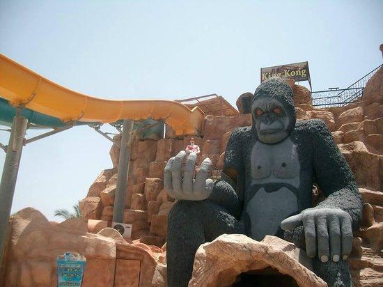 Aqua Blu Sharm: king kong tower