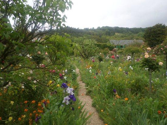 Maison et jardins de Claude Monet : Vista hermosa de una parte del inmenso jardín.