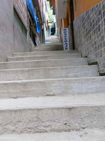 Rupa Wasi  Lodge: Stairs to go up to Rupa Wasi