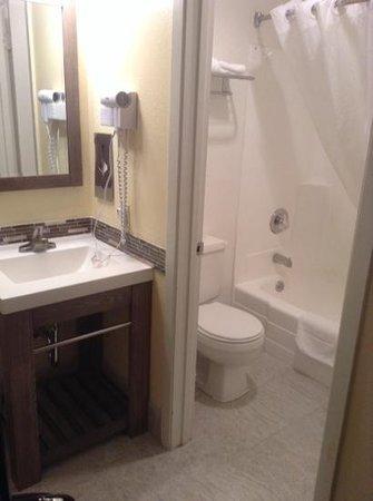 Hotel Focus SFO: bathroom