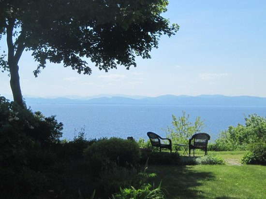 One of a Kind Bed and Breakfast: view from the garden
