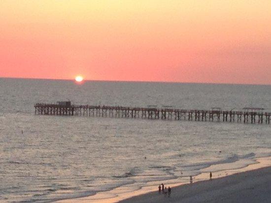 Doubletree Beach Resort by Hilton Tampa Bay / North Redington Beach : From my room.