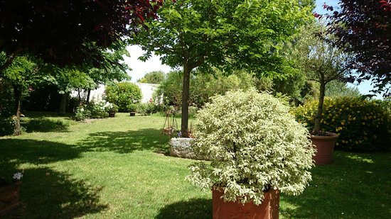 la Salorge : La terrasse