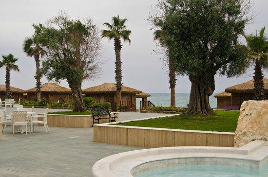 Alva Donna Exclusive Hotel & Spa: Территория отеля