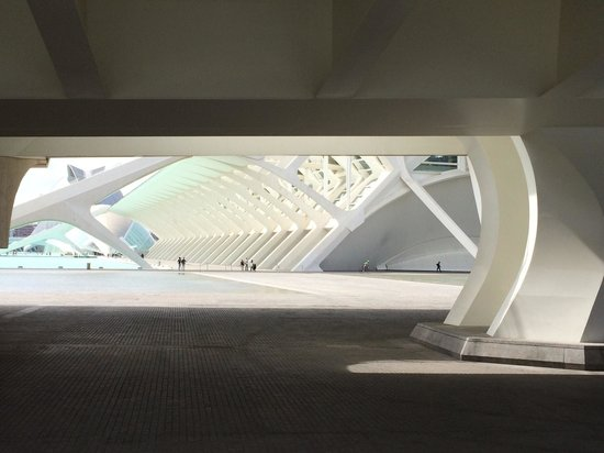 City of the Arts and Sciences : Nice view!