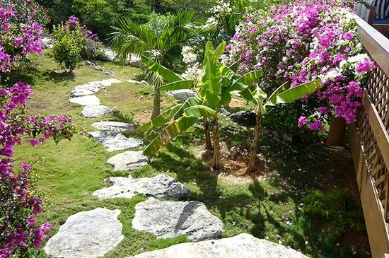 Shannas Cove Resort : Lush lanscaping outside main building