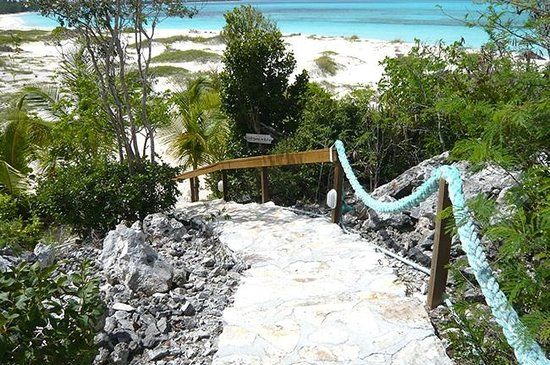 Shannas Cove Resort: Path to beach