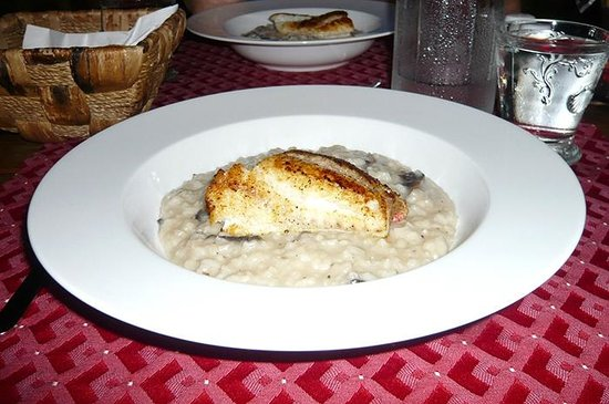 Shannas Cove Resort: Red Snapper filet and risotto