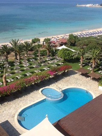 Alion Beach Hotel: Alion garden and pool