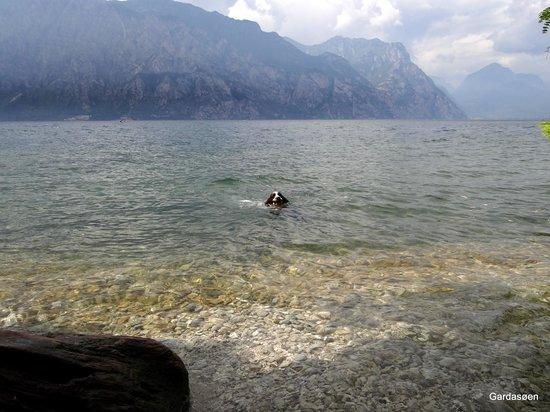 Hotel Baitone: Gardasøen er god at svømme i.