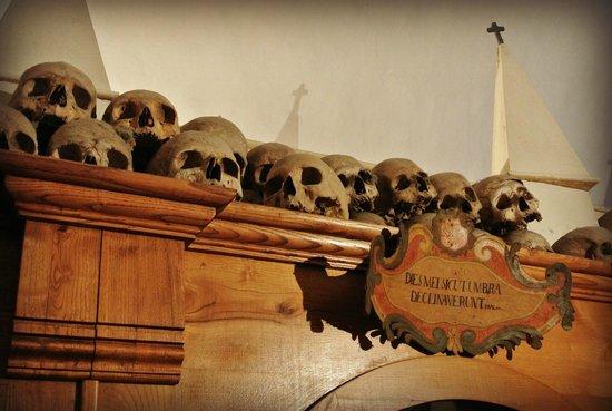 teschi nella chiesa dei morti a Urbania