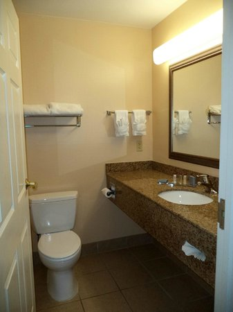 Wingate by Wyndham Atlanta Airport Fairburn: Bathroom