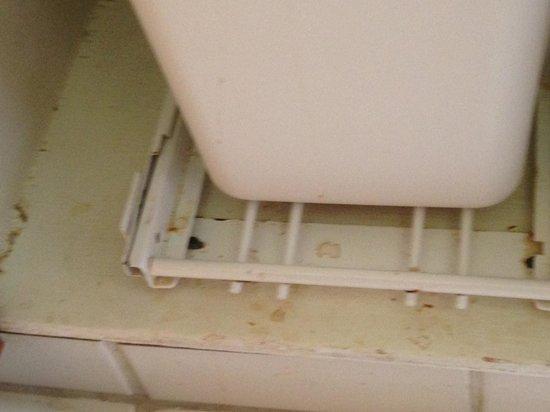 Kanaloa at Kona : Obviously not cleaned...