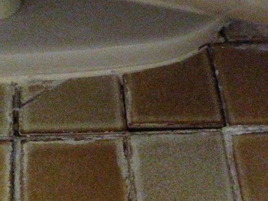 Kanaloa at Kona : Toilet Tiles coming up