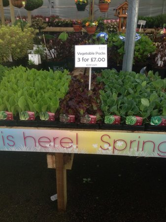 Hollybeck Nurseries: Grow your own!!!