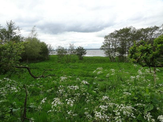 Bay Cottage Bed & Breakfast: Lough Neagh