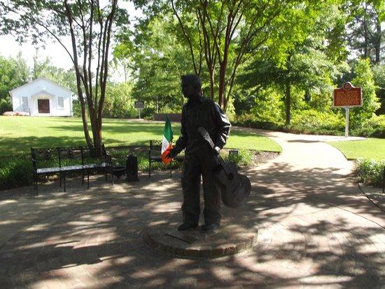 Hilton Garden Inn Tupelo: 'Elvis at 13' holding the Irish tricolour.