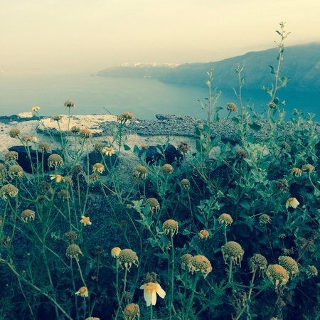Santorini's Balcony: View early in the morning