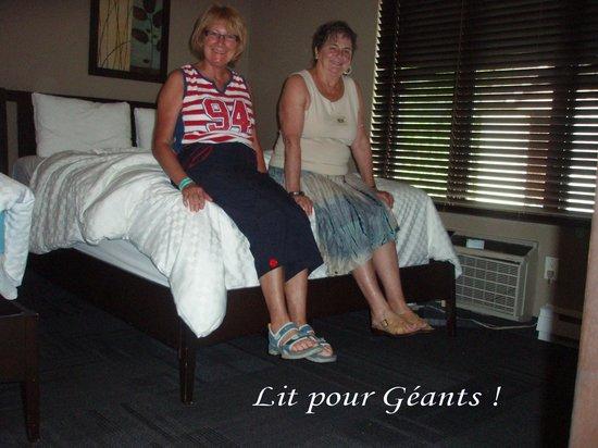 Spa & Hotel Le Finlandais : Lit pour Géants