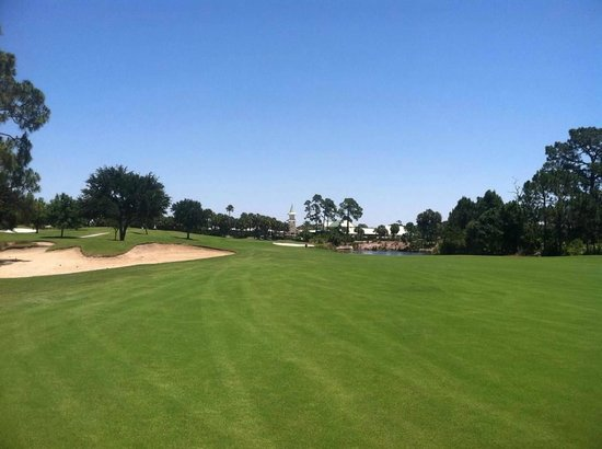 Hilton Garden Inn at PGA Village / Port St. Lucie: Golf Course