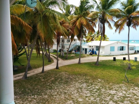 Neptune's Treasure: View from the 2nd story of the cottage toward Pam's/other rooms