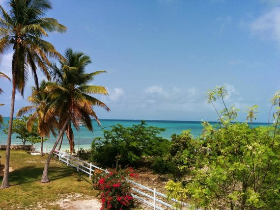 Neptune's Treasure: View from the 2nd story of the cottage away from property