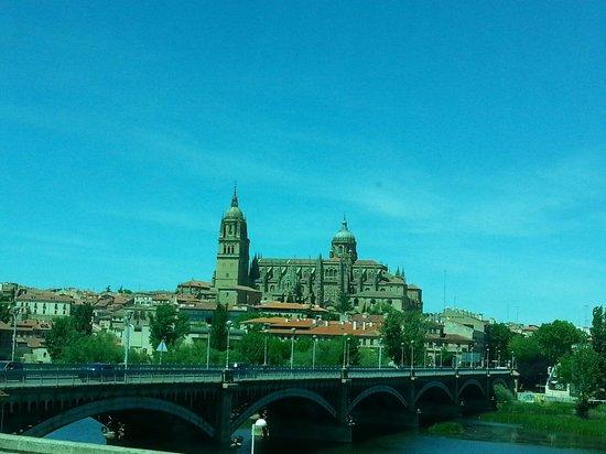 Catedral Nueva: La Cattedrale nuova e il ponte romano