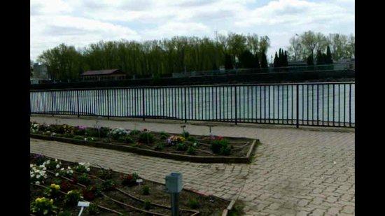 Erie Basin Marina: Garden by the water