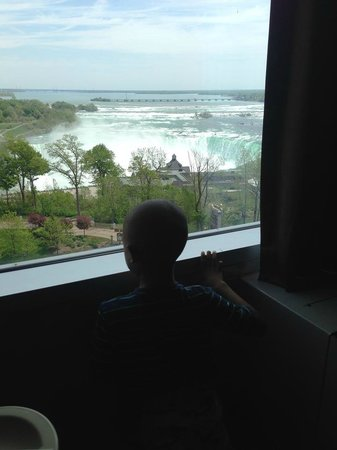 Oakes Hotel Overlooking the Falls: View from our room