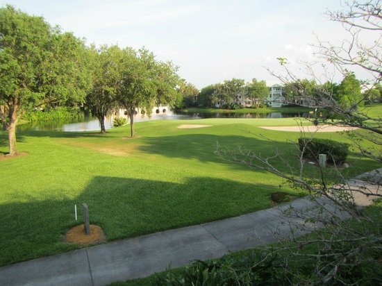 Disney's Old Key West Resort: View from Room