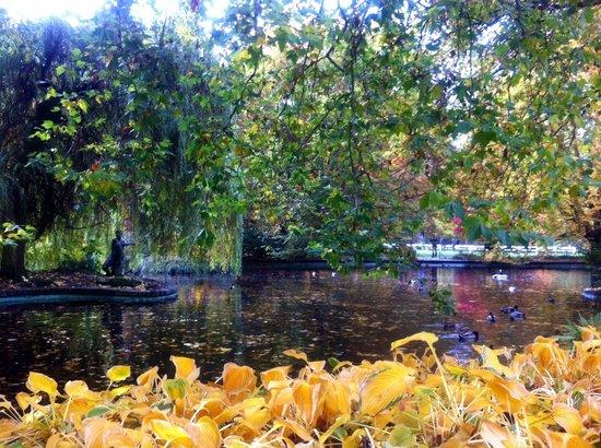 Dvorakovy Sady: Очарование осеннего парка