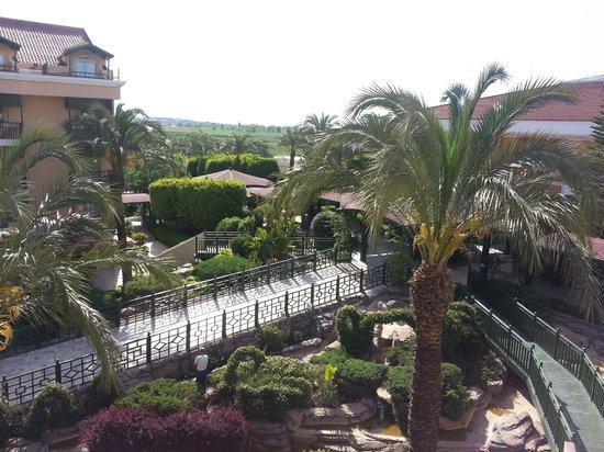 Crystal Paraiso Verde Resort & Spa : Vue de la chambre