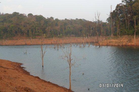 Banasura Island Retreat : Banasura lake