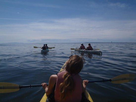 Moondance Sea Kayak Adventures - Day Tours: Sunny Day Paddling