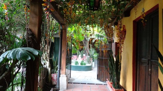 Hotel Casa Antigua : your gateway to flowers & history