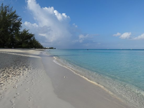 Grand Cayman Marriott Beach Resort: Couldn't get enough of the beach