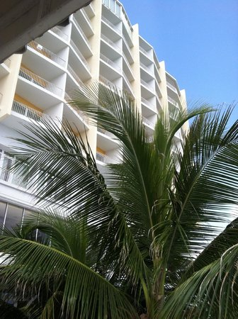The Condado Plaza Hilton: Hotel view from back