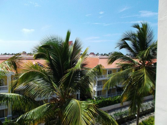 Hotel Riu Palace Punta Cana : Photos from rear of hotel