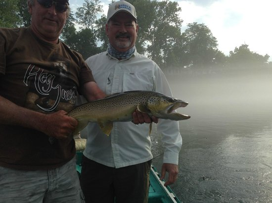 "Cotter Trout Dock Guided Trout Fishing Tours: 25.5"" Brown, May 2014"