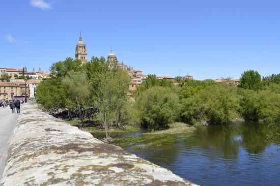 Centro histórico de Salamanca: Puente Romano sobre el Río Tormes.