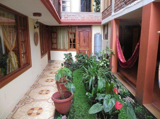 Hotel Donde Ivan: Beautiful plants
