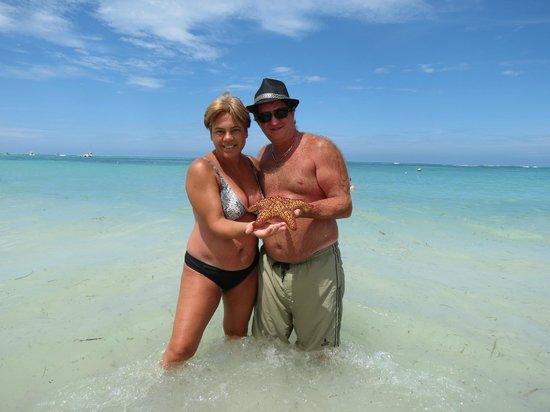 Now Larimar Punta Cana: Estrella de mar