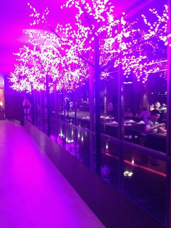 Barcelo Bavaro Palace : Kyoto restaurant