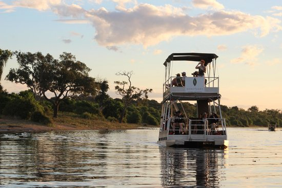 Sanctuary Chobe Chilwero: For us, the best activity provided: the boat tours through the Chobe river
