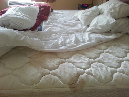 Country Inn & Suites By Carlson, Bessemer : This is the pathetic disgusting over priced bed we paid good money to SLEEP ON!!!